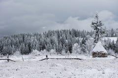 Fondo de la Navidad con los árboles nevosos Fotografía de archivo libre de regalías