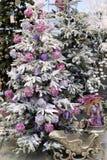 Fondo de la Navidad con los árboles de navidad y las decoraciones Imagen de archivo