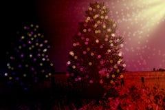 Fondo de la Navidad con los abetos Imagenes de archivo