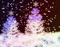 Fondo de la Navidad con los abetos Imagen de archivo