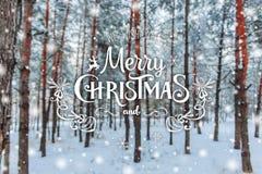 Fondo de la Navidad con los abetos y fondo borroso del invierno con Feliz Navidad del texto y Feliz Año Nuevo Imagenes de archivo
