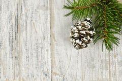 Fondo de la Navidad con los ornamentos en la ramificación Fotos de archivo