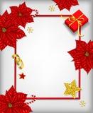 Fondo de la Navidad con la poinsetia ilustración del vector