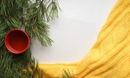 Fondo de la Navidad con una taza de té, ramas del pino con las agujas grandes y un suéter amarillo Primer de la visión superior Foto de archivo
