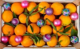 Fondo de la Navidad de la fruta cítrica Fotografía de archivo
