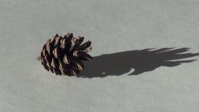 Fondo de la Navidad del cono de abeto almacen de metraje de vídeo