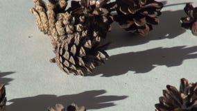 Fondo de la Navidad del cono de abeto almacen de video
