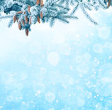 Fondo de la Navidad del invierno con la rama de árbol de abeto Imagen de archivo