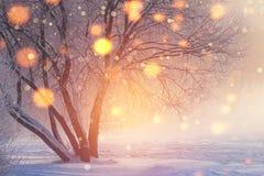 Fondo de la Navidad del invierno Luces brillantes en escena escarchada Copos de nieve coloridos que brillan intensamente en luz d imagen de archivo