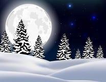 Fondo de la Navidad del paisaje del bosque del invierno Imagenes de archivo