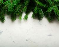 Fondo de la Navidad y del Año Nuevo Ramificación del árbol de navidad en un fondo blanco Un regalo para la familia Visión desde a Foto de archivo libre de regalías