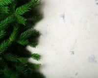 Fondo de la Navidad y del Año Nuevo Ramificación del árbol de navidad en un fondo blanco Un regalo para la familia Visión desde a Imagen de archivo