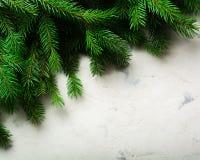Fondo de la Navidad y del Año Nuevo Ramificación del árbol de navidad en un fondo blanco Un regalo para la familia Visión desde a Imagen de archivo libre de regalías
