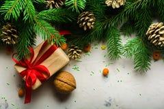 Fondo de la Navidad y del Año Nuevo Ramificación del árbol de navidad en un fondo blanco Un regalo para la familia Visión desde a Fotos de archivo