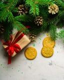 Fondo de la Navidad y del Año Nuevo Ramificación del árbol de navidad en un fondo blanco Un regalo para la familia Visión desde a Imágenes de archivo libres de regalías