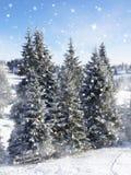 Fondo de la nieve Abetos Fotos de archivo libres de regalías