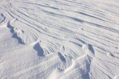 Fondo de la nieve - fotos comunes imagen de archivo libre de regalías