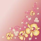 Fondo de la orquídea ilustración del vector