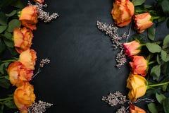 Fondo de la oscuridad de las rosas del otoño del rojo anaranjado imágenes de archivo libres de regalías