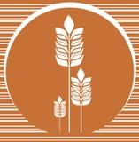 Fondo de la panadería con las espigas de trigo Foto de archivo libre de regalías