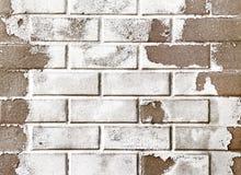 Fondo de la pared de ladrillo Imagenes de archivo