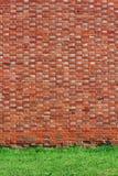 Fondo de la pared de ladrillo con la hierba Fotografía de archivo libre de regalías