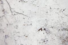 Fondo de la pared de piedra del alto fragmento detallado Imagenes de archivo