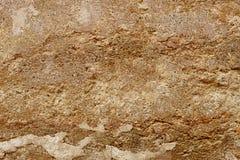 Fondo de la pared del yeso del cemento del color de Emperador Foto de archivo