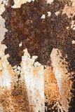 Fondo de la pared marrón y blanca de la peladura Foto de archivo libre de regalías
