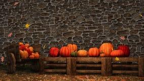 Fondo de la pared de piedra de las calabazas de otoño de la acción de gracias