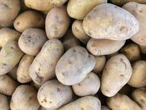 Fondo de la patata Foto de archivo libre de regalías