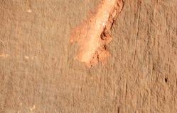 Fondo de la piedra del ladrillo de la pared Foto de archivo