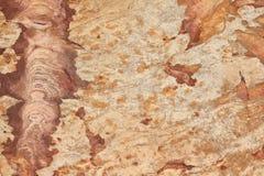 Fondo de la piedra del ladrillo de la pared Imágenes de archivo libres de regalías