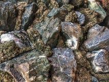 Fondo de la piedra y de la roca Imagenes de archivo