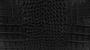 Fondo de la piel de serpiente Imagenes de archivo