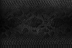 Fondo de la piel de serpiente Fotografía de archivo libre de regalías
