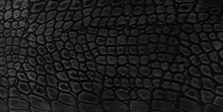 Fondo de la piel de serpiente Foto de archivo libre de regalías