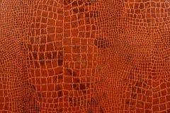 Fondo de la piel del cocodrilo Foto de archivo