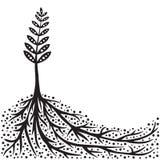 Fondo de la planta y de las raíces stock de ilustración