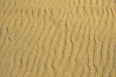 Fondo de la playa de Sandy Foto de archivo