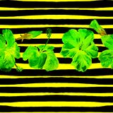 Fondo de la playa del verano Modelo inconsútil de la acuarela Adorno tropical pintado a mano del verano con el hibisco y la raya Foto de archivo