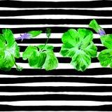 Fondo de la playa del verano Modelo inconsútil de la acuarela Adorno tropical pintado a mano del verano con el hibisco y la raya Fotografía de archivo