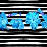 Fondo de la playa del verano Modelo inconsútil de la acuarela Adorno tropical pintado a mano del verano con el hibisco y la raya Fotografía de archivo libre de regalías