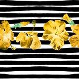 Fondo de la playa del verano Modelo inconsútil de la acuarela Adorno tropical pintado a mano del verano con el hibisco y la raya Imagen de archivo libre de regalías