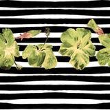 Fondo de la playa del verano Modelo inconsútil de la acuarela Adorno tropical pintado a mano del verano con el hibisco y la raya Imagen de archivo