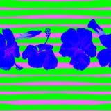 Fondo de la playa del verano Modelo inconsútil de la acuarela Adorno tropical pintado a mano del verano con el hibisco y la raya Imagenes de archivo