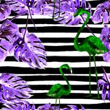Fondo de la playa del verano Modelo inconsútil de la acuarela Adorno tropical pintado a mano del verano con los árboles hawaianos Imagen de archivo libre de regalías