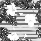 Fondo de la playa del verano Modelo inconsútil de la acuarela Adorno tropical pintado a mano del verano con Monstera y el hibisco Foto de archivo libre de regalías
