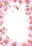 Fondo de la primavera Fotos de archivo
