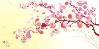 Fondo de la primavera Imagen de archivo libre de regalías